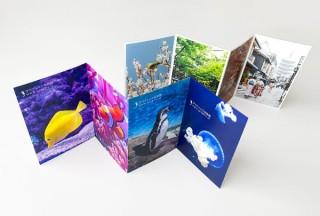 切り離すとポストカードに!印刷の通販グラフィックが「ジャバラ折ポストカード印刷」を発売