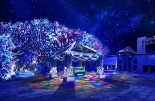 横浜のイルミネーション「ヨコハマミライト」を被写体とした作品を募集する写真コンテストが開催中