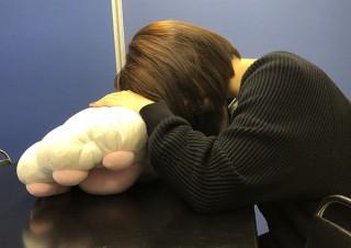 ヴィレヴァン、腕を通して利用できる猫の手モチーフの大きなクッションを発売