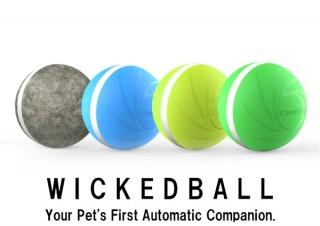 Qrosübo、留守番中のペットを楽しませる自動ペットトイWicked Ball先行販売開始