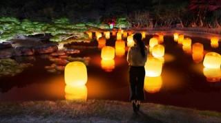 国の特別名勝に指定された美しい日本庭園で光のアートを楽しめる「チームラボ 栗林公園 光の祭」