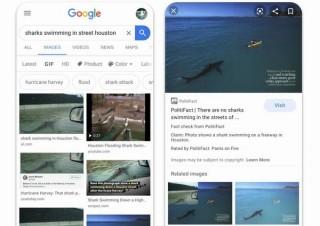 Google、画像検索にもファクトチェックのラベルを採用