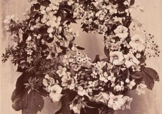 1939年にパリで初めて写真術が公開されてからの「フランスの写真」の歴史を紹介する展覧会が開催