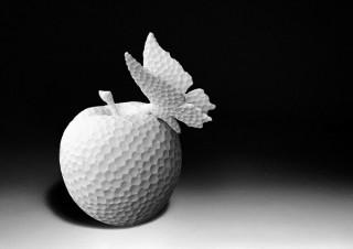 発泡スチロールを題材とした新シリーズも展示される浅香弘能氏の個展「KASHOUMON-《仮象》」