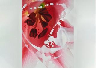 安田奈緒子氏と林雅之氏の共作で絵画と写真を融合させた作品を展示販売する「Overlap」展
