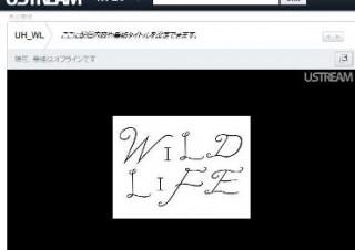 Ustream、宇多田ヒカルのコンサート「WILD LIFE」を全世界に配信