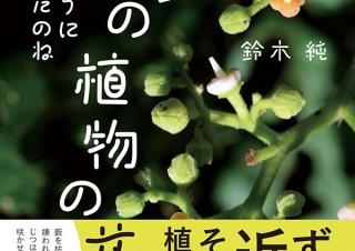気になるフォント、知りたいフォント。 書籍『そんなふうに生きていたのね まちの植物のせかい/鈴木純』(2020.10.15)