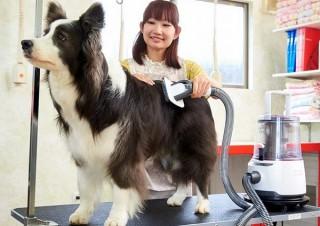 わんこをブラッシングしつつ抜け毛を吸い取る犬用掃除機「OFT DOG CLEANER」