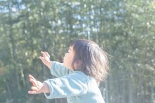 新作写真集「as it is」の刊行を記念した川内倫子氏の写真展がRAURAUJIギャラリーで開催