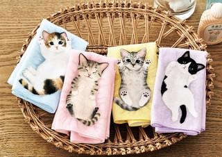 フェリシモ、毛布の上でころがる子猫をイメージしたタオルハンカチを発売