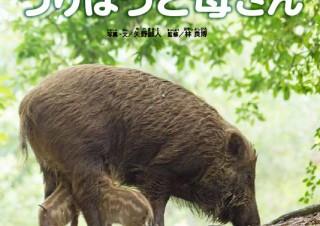 """第1回""""日本写真絵本大賞""""の金賞を受賞した「うりぼうと母さん」の出版記念写真展が開催"""