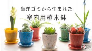 テクノラボ、海洋プラスチックごみを材料にした室内用ミニ植木鉢「buoyプランツポット」を発売