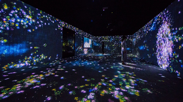 「花と人、コントロールできないけれども、共に生きる - A Whole Year per Hour」 teamLab, 2014 -, Interactive Digital Installation, Endless, Sound: Hideaki Takahashi